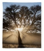 Desert Tree Fleece Blanket