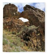 Desert Wildflowers Grand Arch  Fleece Blanket