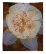Designer Floral Fleece Blanket
