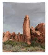 Devils Garden Arches Np Fleece Blanket