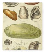 Devonian Fossils, Illustration Fleece Blanket