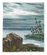 Devonian Period Fleece Blanket