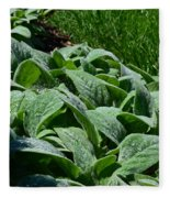 Dew Kissed Foliage Fleece Blanket