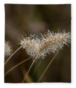 Dew On Ornamental Grass No. 2 Fleece Blanket