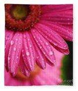 Dewdrop Daisy Fleece Blanket