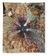 Diadema Urchin Fleece Blanket