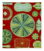 Diatoms-ernst Haeckel Fleece Blanket