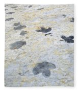 Dinosaur Tracks Fleece Blanket