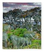 Dinosaur Trees Fleece Blanket