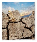 Dirt And Sky Fleece Blanket