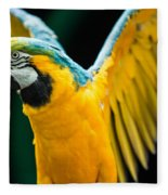 Do Your Exercise Daily Blue And Yellow Macaw Fleece Blanket