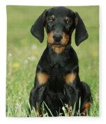 Doberman Pinscher Puppy Fleece Blanket