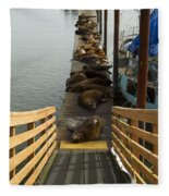 Dock Sea Lions Astoria Or 1 A Fleece Blanket