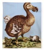 Dodo Fleece Blanket