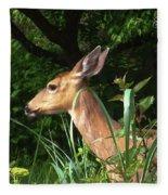 Doe In Tall Grass Fleece Blanket