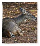 Doe Lying Down Fleece Blanket