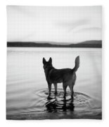 Dog Looking Over Abiquiu Reservior Fleece Blanket