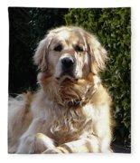 Dog On Guard Fleece Blanket