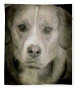 Dog Posing Fleece Blanket