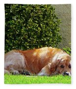 Dog Relaxing Fleece Blanket