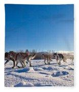 Dog Team Pulling Sled Fleece Blanket