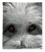 Coton Eyes Fleece Blanket