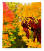Dogwood And Fall Colors Fleece Blanket