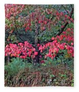 Dogwood Leaves In The Fall Fleece Blanket