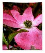 Dogwood Shows Pink Fleece Blanket