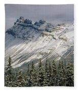 1m3538-dolomite Peak Fleece Blanket