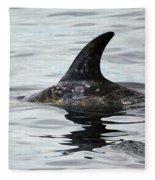 Dolphin In Monterey Fleece Blanket