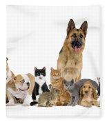 Domestic Mammal Pets Fleece Blanket