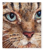 Domestic Tabby Cat Fleece Blanket