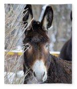 Donkey And The Mule Fleece Blanket