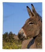 Donkey In Greece Fleece Blanket