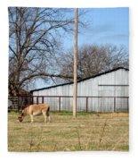 Donkey Lebanon In Oklahoma Fleece Blanket