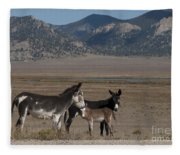 Donkeys In The Colorado Rockies Fleece Blanket