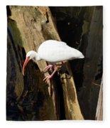 White Ibis Bird Fleece Blanket