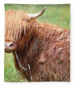 Don't Mess With Texas Fleece Blanket
