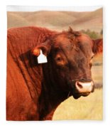 Dont Mess With The Bull Fleece Blanket