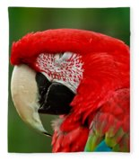 Dont You Dare To Stare Macaw Fleece Blanket