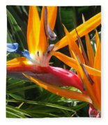 Double Bird Of Paradise - 1 Fleece Blanket