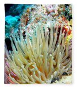 Double Giant Anemone And Arrow Crab Fleece Blanket