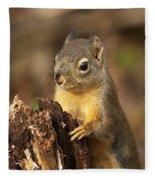 Douglas Squirrel On Stump Fleece Blanket