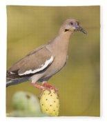 Dove On A Cactus Bud Fleece Blanket