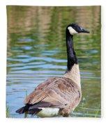 Down Around The Pond Fleece Blanket