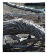 Down Tree Arch Fleece Blanket