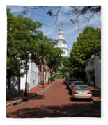 Downtown Annapolis With Maryland State House Cupola Fleece Blanket