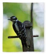 Downy Woodpecker 7448 Fleece Blanket