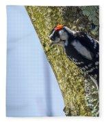 Downy Woodpecker - Male Fleece Blanket